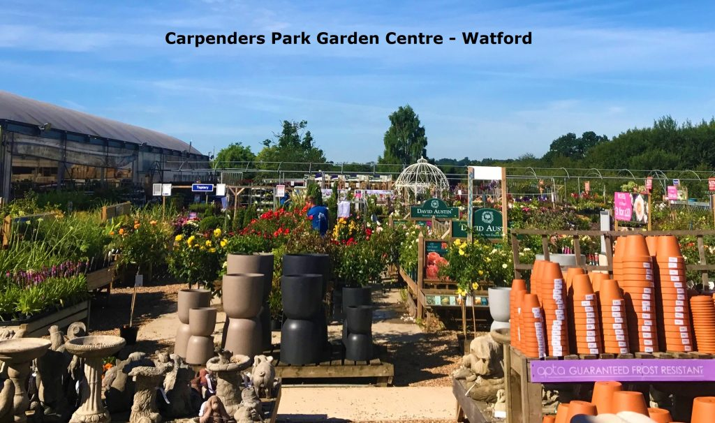 Carpenders Park Garden Centre and NedFox
